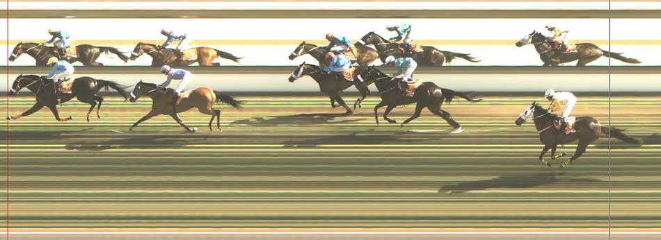 2015-Maiden-Cup-photo-finish